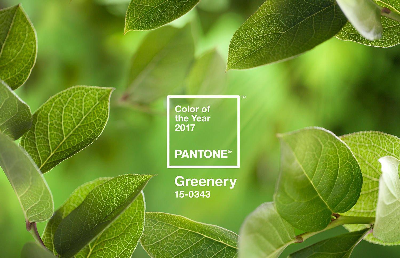 pantone-coy2017-heroshot2-rgb - PANTONE - green - greenery